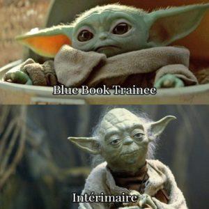 Little Yoda as trainee